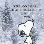snoopy.up